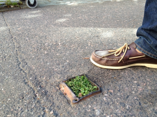 Helsinki's smallest park. A moment of pure joy. No explanation needed and none available.